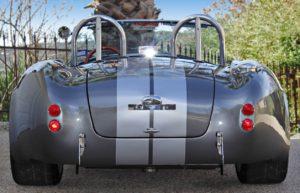 cobra-rear