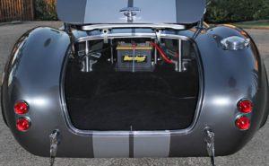 cobra-trunk